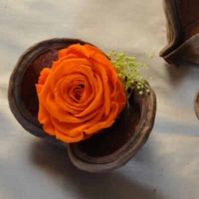 Coeur rose orange et gypsophile - A coeur ouvert - - photo vitrine